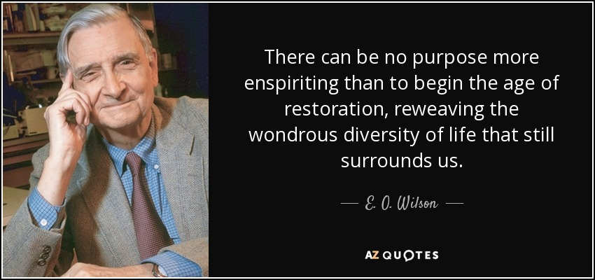 There can be no purpose more enspiriting than to begin the age of restoration, reweaving the wondrous diversity of life that still surrounds us. - E. O. Wilson