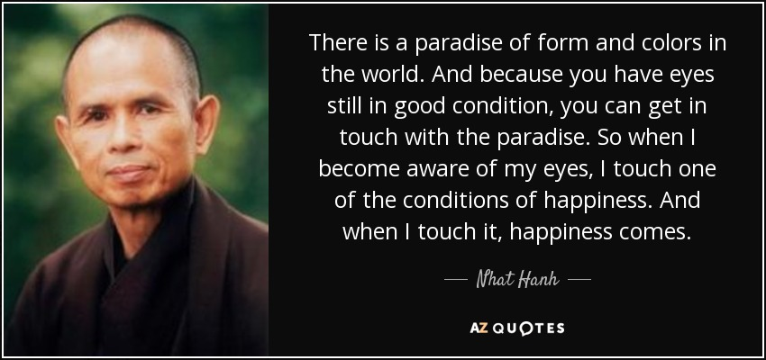 There is a paradise of form and colors in the world. And because you have eyes still in good condition, you can get in touch with the paradise. So when I become aware of my eyes, I touch one of the conditions of happiness. And when I touch it, happiness comes. - Nhat Hanh