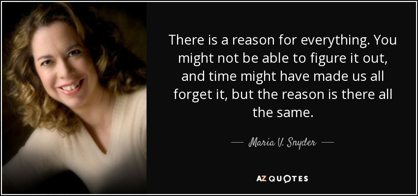 There is a reason for everything. You might not be able to figure it out, and time might have made us all forget it, but the reason is there all the same. - Maria V. Snyder