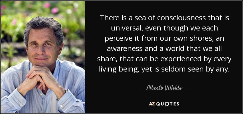 There is a sea of consciousness that is universal, even though we each perceive it from our own shores, an awareness and a world that we all share, that can be experienced by every living being, yet is seldom seen by any. - Alberto Villoldo