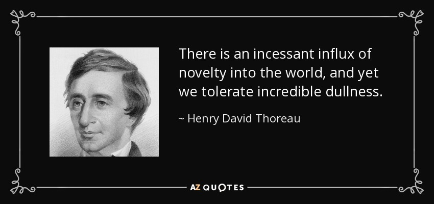There is an incessant influx of novelty into the world, and yet we tolerate incredible dullness. - Henry David Thoreau