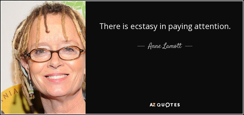 There is ecstasy in paying attention. - Anne Lamott