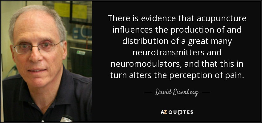 There is evidence that acupuncture influences the production of and distribution of a great many neurotransmitters and neuromodulators, and that this in turn alters the perception of pain. - David Eisenberg