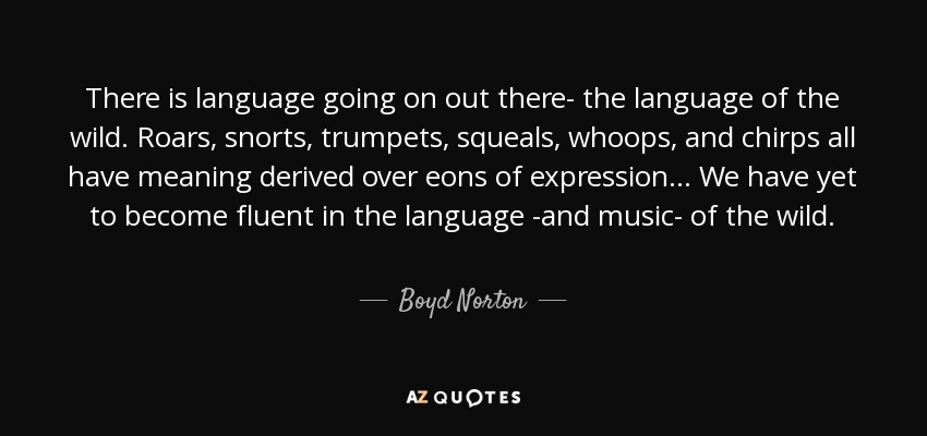 There is language going on out there- the language of the wild. Roars, snorts, trumpets, squeals, whoops, and chirps all have meaning derived over eons of expression... We have yet to become fluent in the language -and music- of the wild. - Boyd Norton