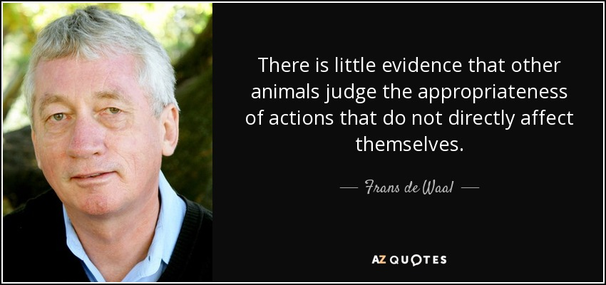 There is little evidence that other animals judge the appropriateness of actions that do not directly affect themselves. - Frans de Waal