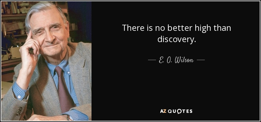 There is no better high than discovery. - E. O. Wilson