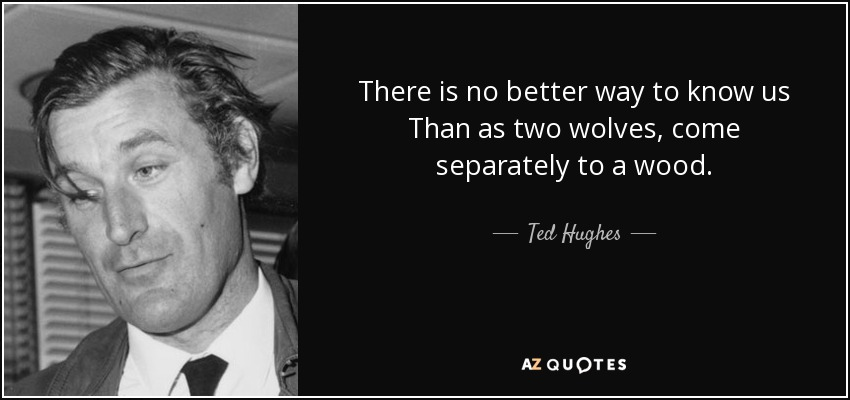 There is no better way to know us Than as two wolves, come separately to a wood. - Ted Hughes
