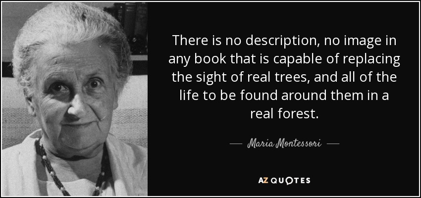 There is no description, no image in any book that is capable of replacing the sight of real trees, and all of the life to be found around them in a real forest. - Maria Montessori