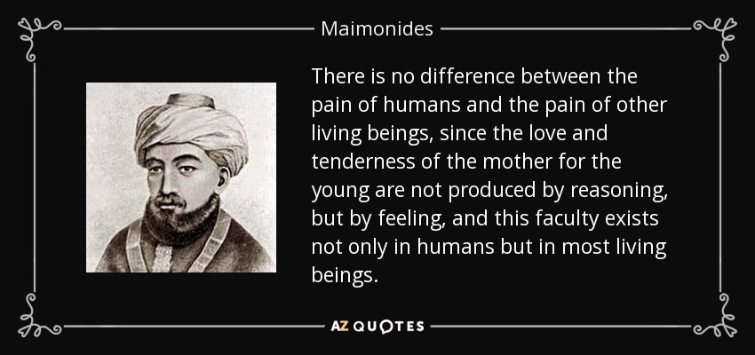 There is no difference between the pain of humans and the pain of other living beings, since the love and tenderness of the mother for the young are not produced by reasoning, but by feeling, and this faculty exists not only in humans but in most living beings. - Maimonides