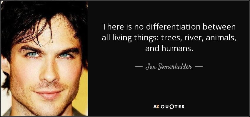 There is no differentiation between all living things: trees, river, animals, and humans. - Ian Somerhalder