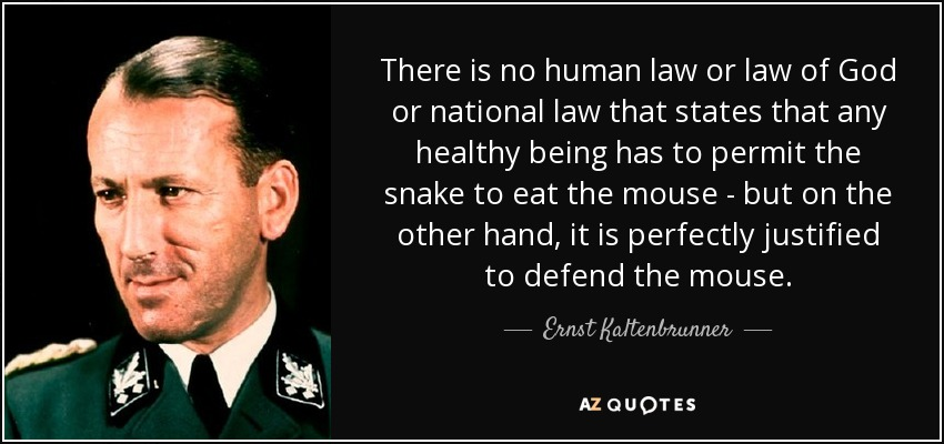 There is no human law or law of God or national law that states that any healthy being has to permit the snake to eat the mouse - but on the other hand, it is perfectly justified to defend the mouse. - Ernst Kaltenbrunner
