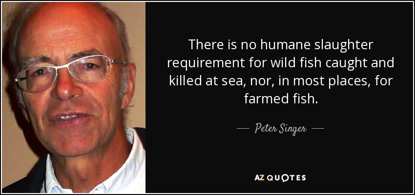 There is no humane slaughter requirement for wild fish caught and killed at sea, nor, in most places, for farmed fish. - Peter Singer