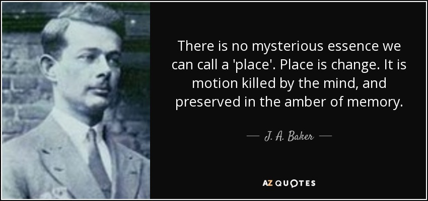 There is no mysterious essence we can call a 'place'. Place is change. It is motion killed by the mind, and preserved in the amber of memory. - J. A. Baker