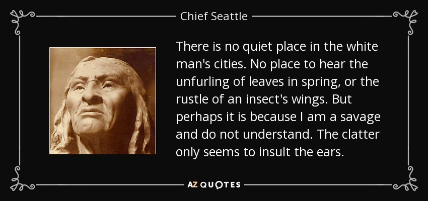 There is no quiet place in the white man's cities. No place to hear the unfurling of leaves in spring, or the rustle of an insect's wings. But perhaps it is because I am a savage and do not understand. The clatter only seems to insult the ears. - Chief Seattle