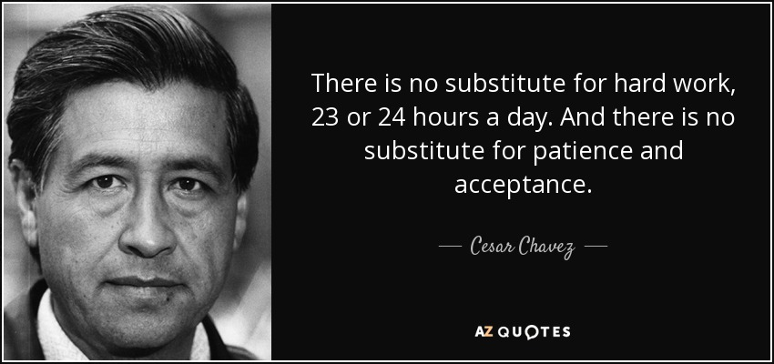 There is no substitute for hard work, 23 or 24 hours a day. And there is no substitute for patience and acceptance. - Cesar Chavez