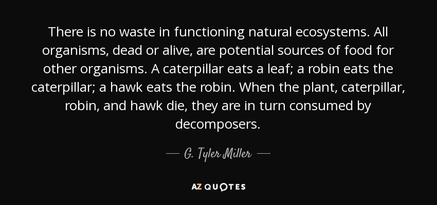 There is no waste in functioning natural ecosystems. All organisms, dead or alive, are potential sources of food for other organisms. A caterpillar eats a leaf; a robin eats the caterpillar; a hawk eats the robin. When the plant, caterpillar, robin, and hawk die, they are in turn consumed by decomposers. - G. Tyler Miller