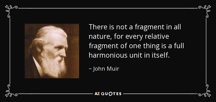 There is not a fragment in all nature, for every relative fragment of one thing is a full harmonious unit in itself. - John Muir
