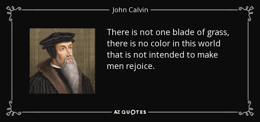 There is not one blade of grass, there is no color in this world that is not intended to make men rejoice. - John Calvin