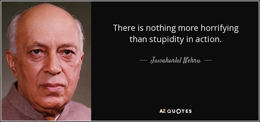 There is nothing more horrifying than stupidity in action. - Jawaharlal Nehru