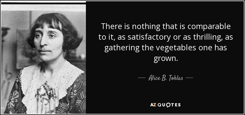 There is nothing that is comparable to it, as satisfactory or as thrilling, as gathering the vegetables one has grown. - Alice B. Toklas