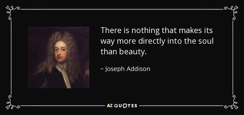 There is nothing that makes its way more directly into the soul than beauty. - Joseph Addison
