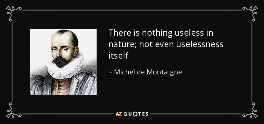 There is nothing useless in nature; not even uselessness itself - Michel de Montaigne