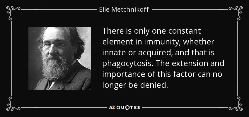 There is only one constant element in immunity, whether innate or acquired, and that is phagocytosis. The extension and importance of this factor can no longer be denied. - Elie Metchnikoff