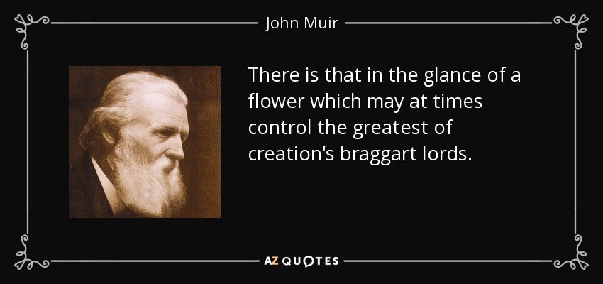 There is that in the glance of a flower which may at times control the greatest of creation's braggart lords. - John Muir