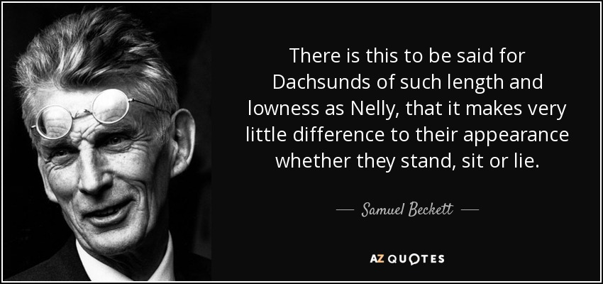 There is this to be said for Dachsunds of such length and lowness as Nelly, that it makes very little difference to their appearance whether they stand, sit or lie. - Samuel Beckett