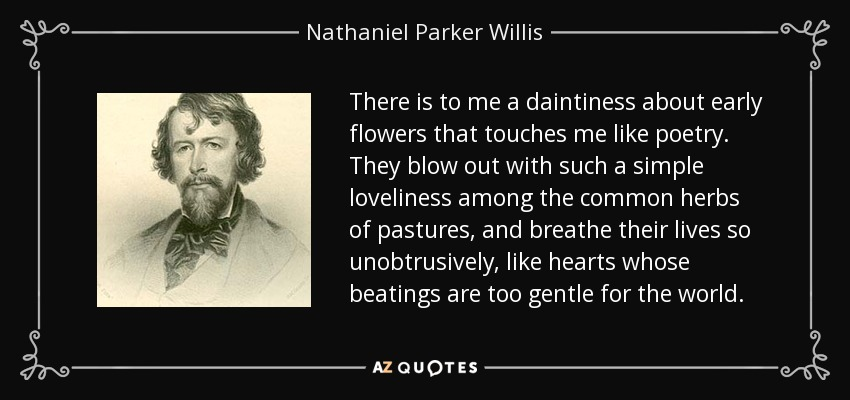 There is to me a daintiness about early flowers that touches me like poetry. They blow out with such a simple loveliness among the common herbs of pastures, and breathe their lives so unobtrusively, like hearts whose beatings are too gentle for the world. - Nathaniel Parker Willis