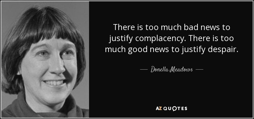 There is too much bad news to justify complacency. There is too much good news to justify despair. - Donella Meadows