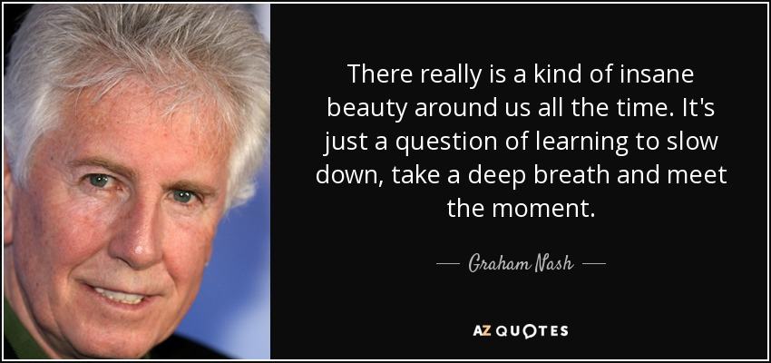 There really is a kind of insane beauty around us all the time. It's just a question of learning to slow down, take a deep breath and meet the moment. - Graham Nash