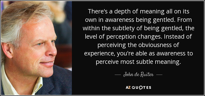 There's a depth of meaning all on its own in awareness being gentled. From within the subtlety of being gentled, the level of perception changes. Instead of perceiving the obviousness of experience, you're able as awareness to perceive most subtle meaning. - John de Ruiter