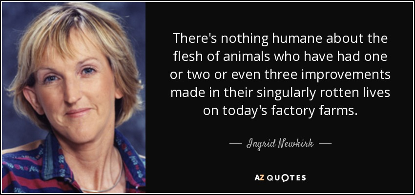 There's nothing humane about the flesh of animals who have had one or two or even three improvements made in their singularly rotten lives on today's factory farms. - Ingrid Newkirk