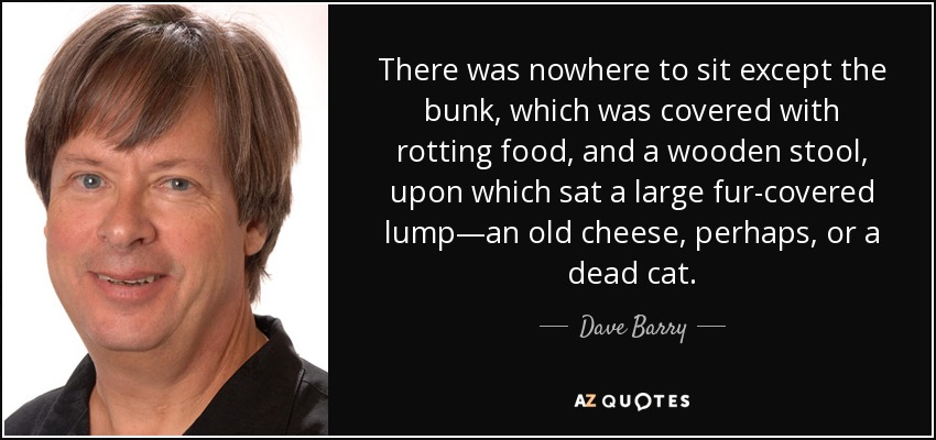 There was nowhere to sit except the bunk, which was covered with rotting food, and a wooden stool, upon which sat a large fur-covered lump—an old cheese, perhaps, or a dead cat. - Dave Barry