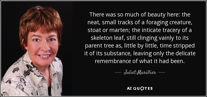 There was so much of beauty here: the neat, small tracks of a foraging creature, stoat or marten; the inticate tracery of a skeleton leaf, still clinging vainly to its parent tree as, little by little, time stripped it of its substance, leaving only the delicate remembrance of what it had been. - Juliet Marillier