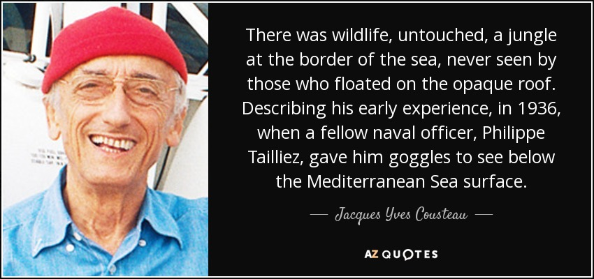 There was wildlife, untouched, a jungle at the border of the sea, never seen by those who floated on the opaque roof. Describing his early experience, in 1936, when a fellow naval officer, Philippe Tailliez, gave him goggles to see below the Mediterranean Sea surface. - Jacques Yves Cousteau