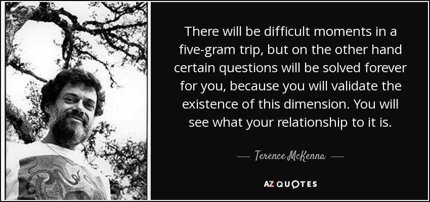 There will be difficult moments in a five-gram trip, but on the other hand certain questions will be solved forever for you, because you will validate the existence of this dimension. You will see what your relationship to it is. - Terence McKenna
