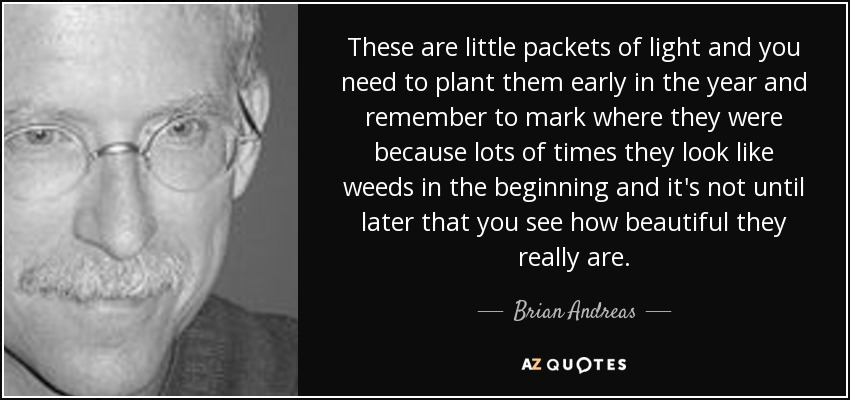 These are little packets of light and you need to plant them early in the year and remember to mark where they were because lots of times they look like weeds in the beginning and it's not until later that you see how beautiful they really are. - Brian Andreas