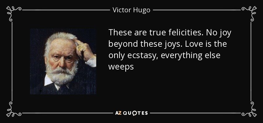 These are true felicities. No joy beyond these joys. Love is the only ecstasy, everything else weeps - Victor Hugo