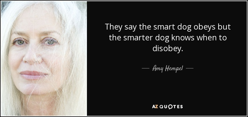 They say the smart dog obeys but the smarter dog knows when to disobey. - Amy Hempel