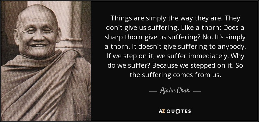 Things are simply the way they are. They don't give us suffering. Like a thorn: Does a sharp thorn give us suffering? No. It's simply a thorn. It doesn't give suffering to anybody. If we step on it, we suffer immediately. Why do we suffer? Because we stepped on it. So the suffering comes from us. - Ajahn Chah