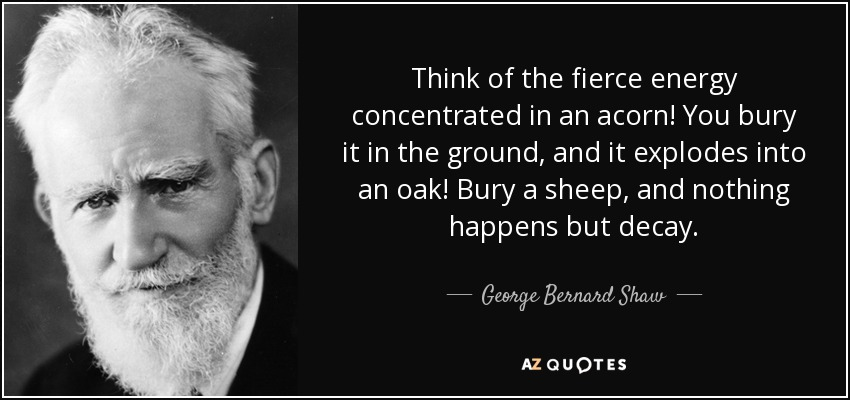 Think of the fierce energy concentrated in an acorn! You bury it in the ground, and it explodes into an oak! Bury a sheep, and nothing happens but decay. - George Bernard Shaw