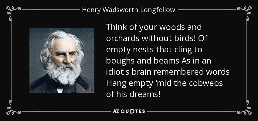 Think of your woods and orchards without birds! Of empty nests that cling to boughs and beams As in an idiot's brain remembered words Hang empty 'mid the cobwebs of his dreams! - Henry Wadsworth Longfellow