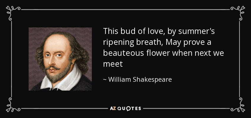 This bud of love, by summer's ripening breath, May prove a beauteous flower when next we meet - William Shakespeare
