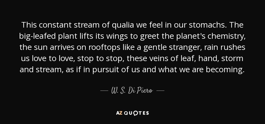 This constant stream of qualia we feel in our stomachs. The big-leafed plant lifts its wings to greet the planet's chemistry, the sun arrives on rooftops like a gentle stranger, rain rushes us love to love, stop to stop, these veins of leaf, hand, storm and stream, as if in pursuit of us and what we are becoming. - W. S. Di Piero