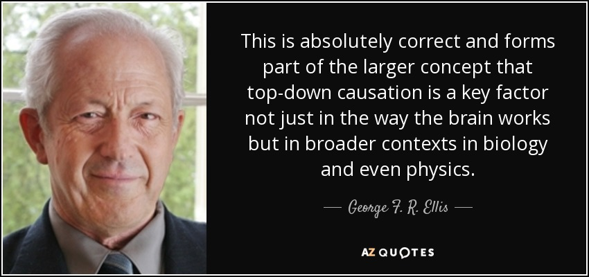 This is absolutely correct and forms part of the larger concept that top-down causation is a key factor not just in the way the brain works but in broader contexts in biology and even physics. - George F. R. Ellis