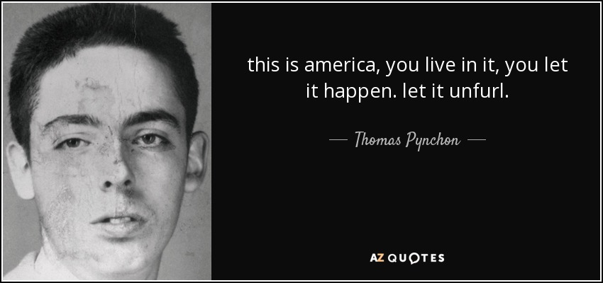 this is america, you live in it, you let it happen. let it unfurl. - Thomas Pynchon