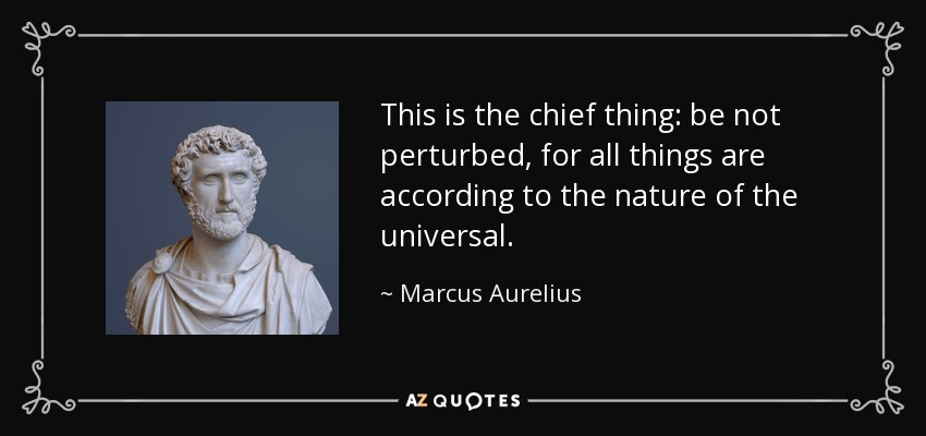 This is the chief thing: be not perturbed, for all things are according to the nature of the universal. - Marcus Aurelius