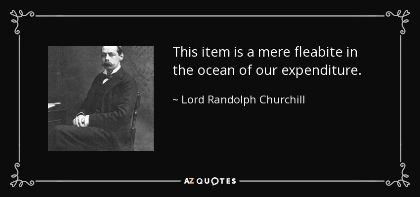 This item is a mere fleabite in the ocean of our expenditure. - Lord Randolph Churchill